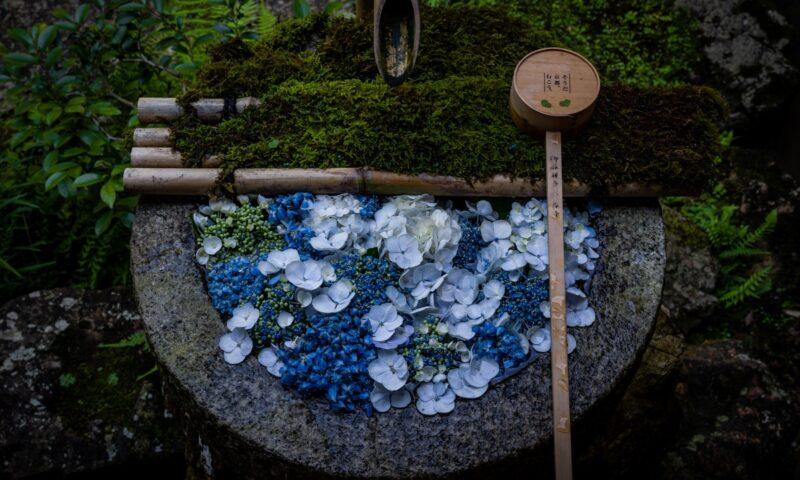 西陣カーボン|京都の歴史
